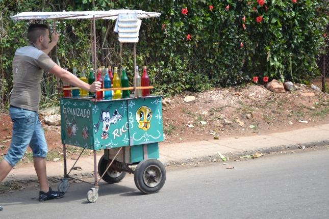 Portable Cuban Juice Bar